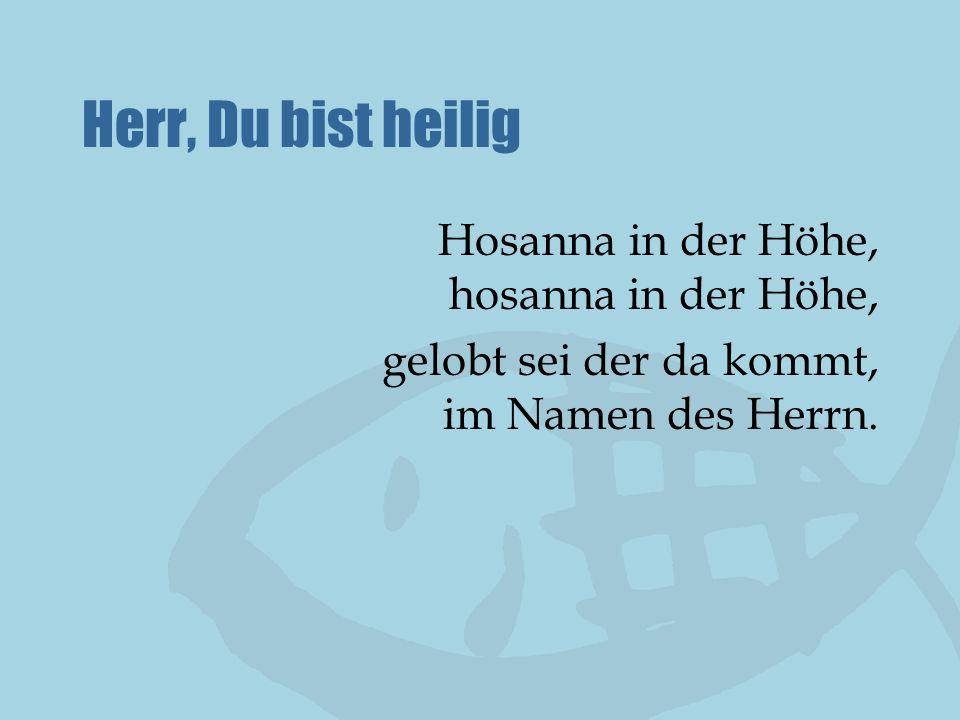 Herr, Du bist heilig Hosanna in der Höhe, hosanna in der Höhe, gelobt sei der da kommt, im Namen des Herrn.