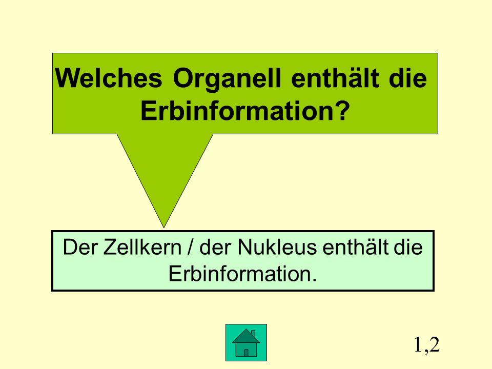 1,2 Welches Organell enthält die Erbinformation.