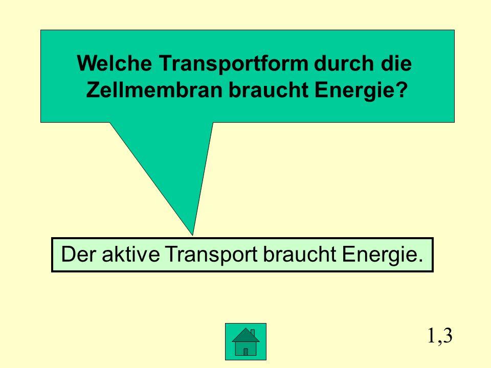 1,3 Welche Transportform durch die Zellmembran braucht Energie.