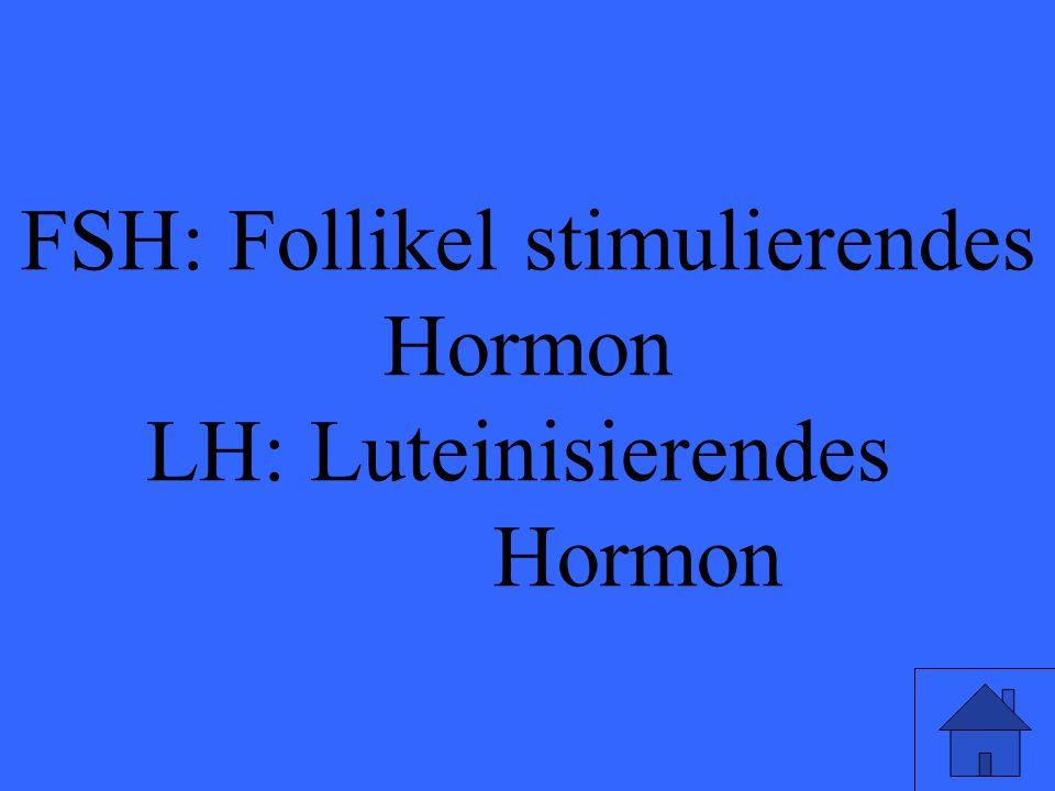 FSH: Follikel stimulierendes Hormon LH: Luteinisierendes Hormon