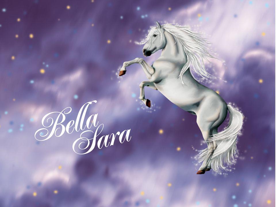 Was ist Bella Sara.