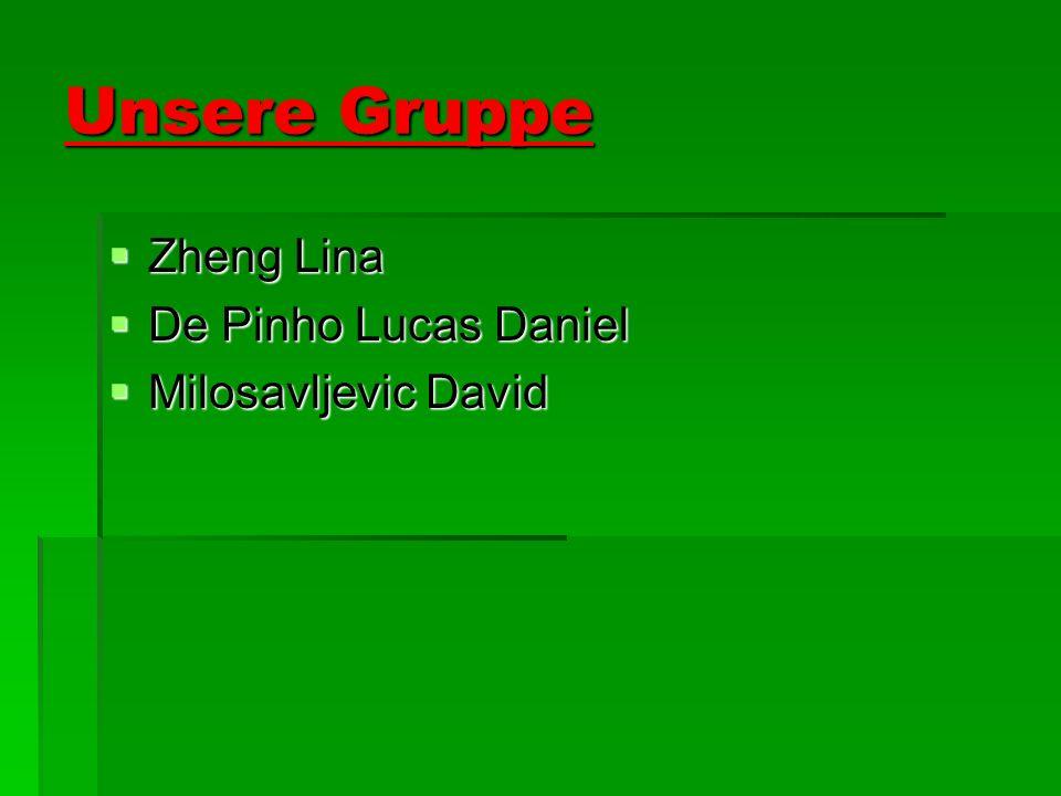 Unsere Gruppe Zheng Lina Zheng Lina De Pinho Lucas Daniel De Pinho Lucas Daniel Milosavljevic David Milosavljevic David