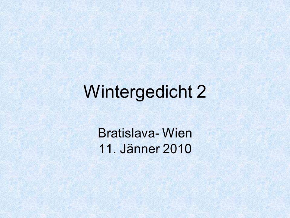 Wintergedicht 2 Bratislava- Wien 11. Jänner 2010