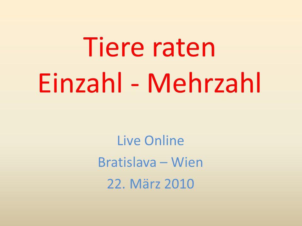 Tiere raten Einzahl - Mehrzahl Live Online Bratislava – Wien 22. März 2010