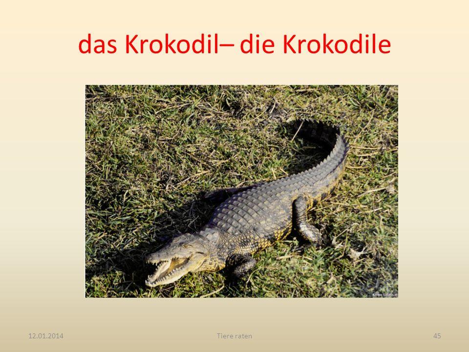 das Krokodil– die Krokodile 12.01.2014Tiere raten45