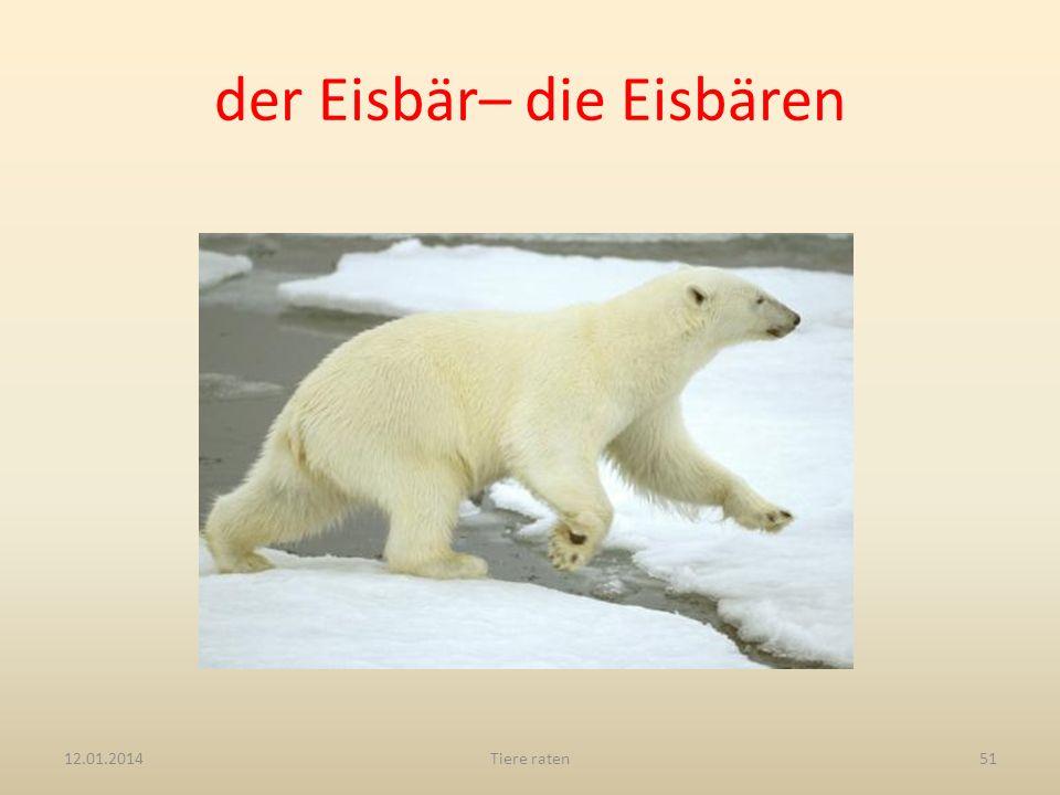 der Eisbär– die Eisbären 12.01.2014Tiere raten51