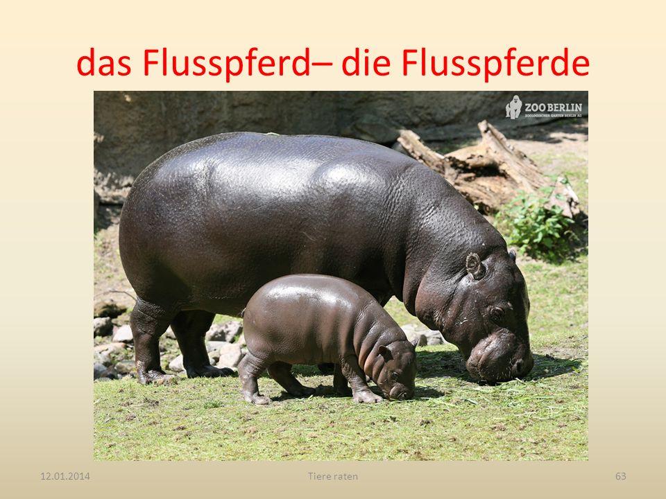 das Flusspferd– die Flusspferde 12.01.2014Tiere raten63