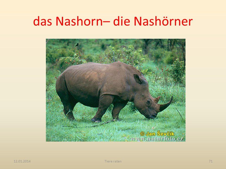 das Nashorn– die Nashörner 12.01.2014Tiere raten71