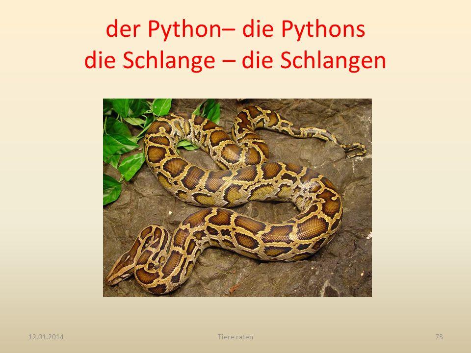 der Python– die Pythons die Schlange – die Schlangen 12.01.2014Tiere raten73