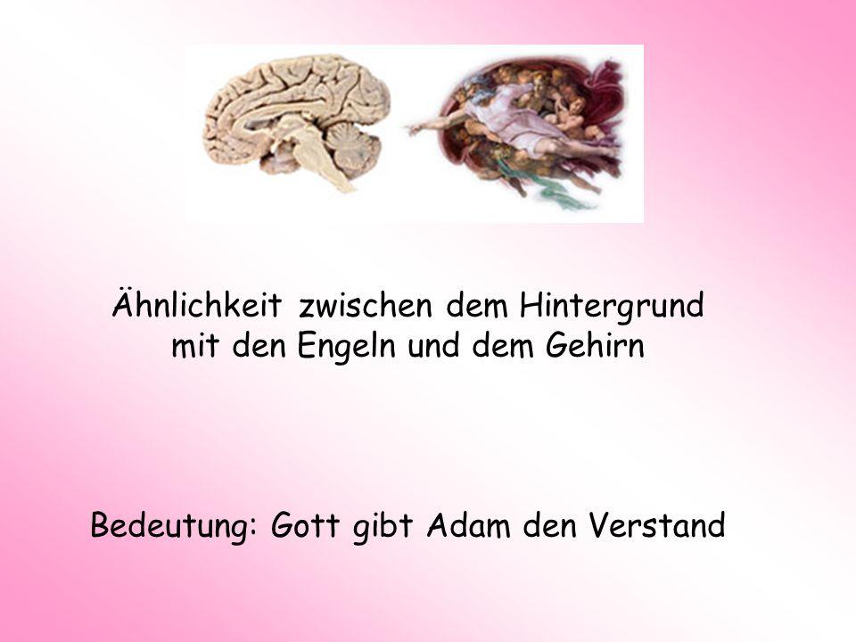 Ähnlichkeit zwischen dem Hintergrund mit den Engeln und dem Gehirn Bedeutung: Gott gibt Adam den Verstand