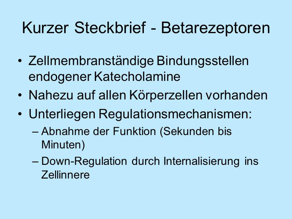 Kurzer Steckbrief - Betarezeptoren Zellmembranständige Bindungsstellen endogener Katecholamine Nahezu auf allen Körperzellen vorhanden Unterliegen Regulationsmechanismen: –Abnahme der Funktion (Sekunden bis Minuten) –Down-Regulation durch Internalisierung ins Zellinnere