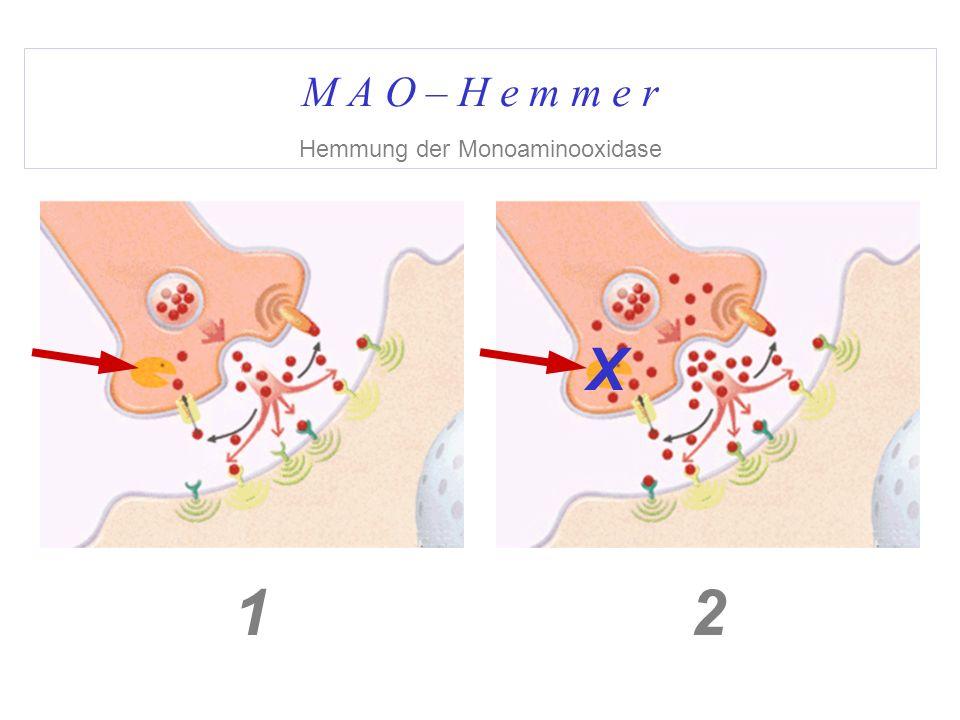 M A O – H e m m e r Hemmung der Monoaminooxidase 12 X