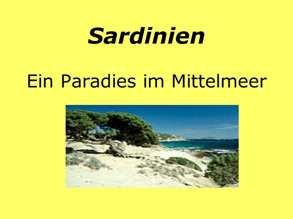 Sardinien Ein Paradies im Mittelmeer