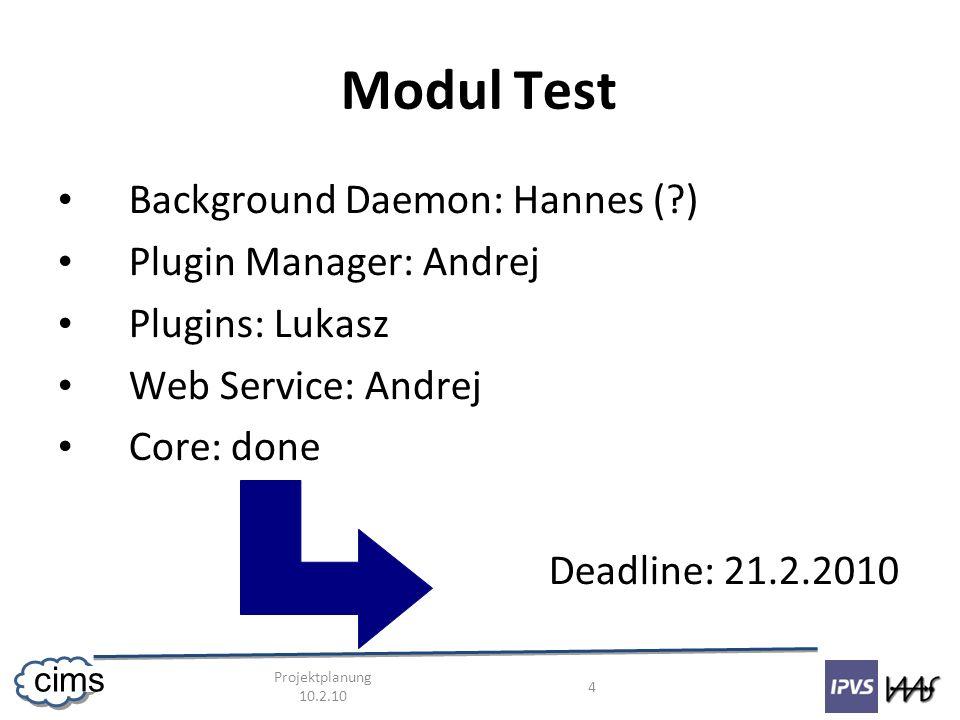 Projektplanung 10.2.10 5 cims Integration