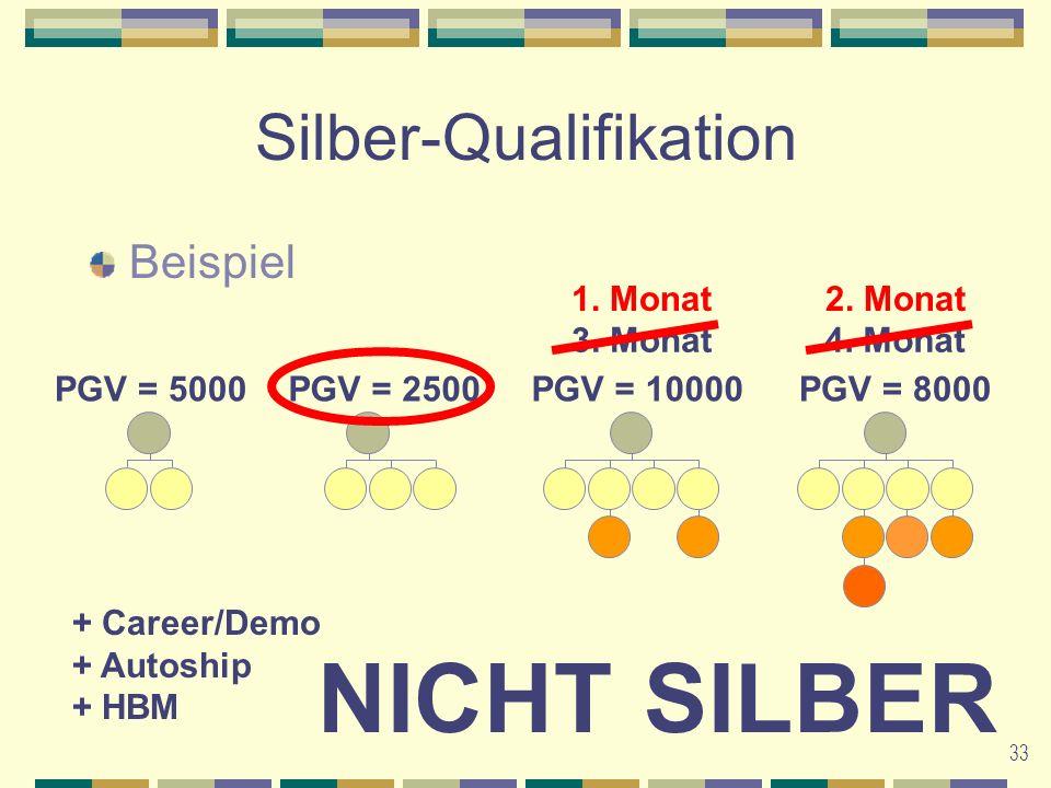 33 Silber-Qualifikation Beispiel 1. Monat3. Monat4.