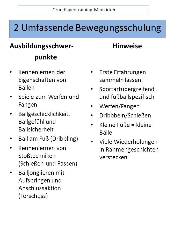 2 Umfassende Bewegungsschulung Ausbildungsschwer- punkte Kennenlernen der Eigenschaften von Bällen Spiele zum Werfen und Fangen Ballgeschicklichkeit, Ballgefühl und Ballsicherheit Ball am Fuß (Dribbling) Kennenlernen von Stoßtechniken (Schießen und Passen) Balljonglieren mit Aufspringen und Anschlussaktion (Torschuss) Hinweise Erste Erfahrungen sammeln lassen Sportartübergreifend und fußballspezifisch Werfen/Fangen Dribbbeln/Schießen Kleine Füße = kleine Bälle Viele Wiederholungen in Rahmengeschichten verstecken Grundlagentraining Minikicker