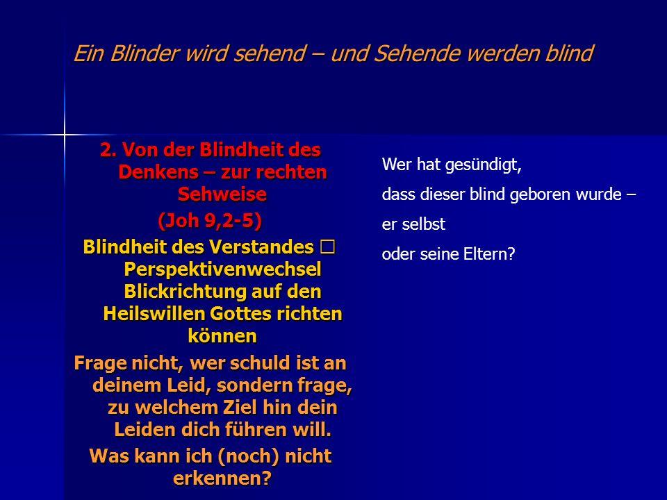 Ein Blinder wird sehend – und Sehende werden blind 2. Von der Blindheit des Denkens – zur rechten Sehweise (Joh 9,2-5) Blindheit des Verstandes Perspe