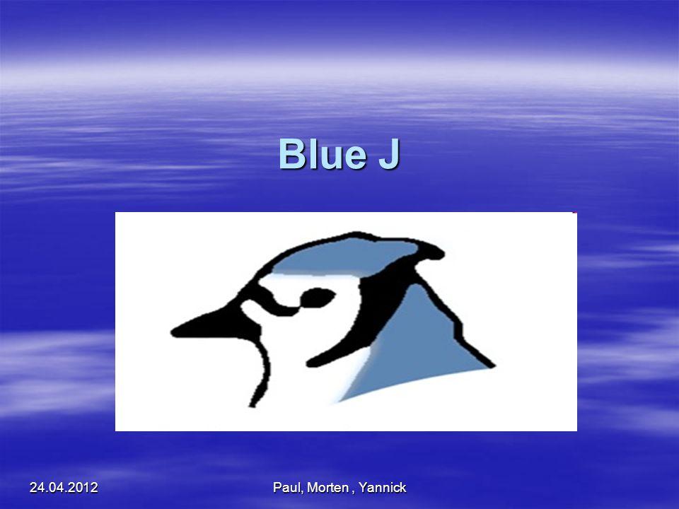 Entwicklungsumgebung versteht Java Programmcode versteht Java Programmcode Für die Entwicklung eigener Software Für die Entwicklung eigener Software Durch die Programmierung werden Objekte der realen Welt, in der Software gespeichert Durch die Programmierung werden Objekte der realen Welt, in der Software gespeichert