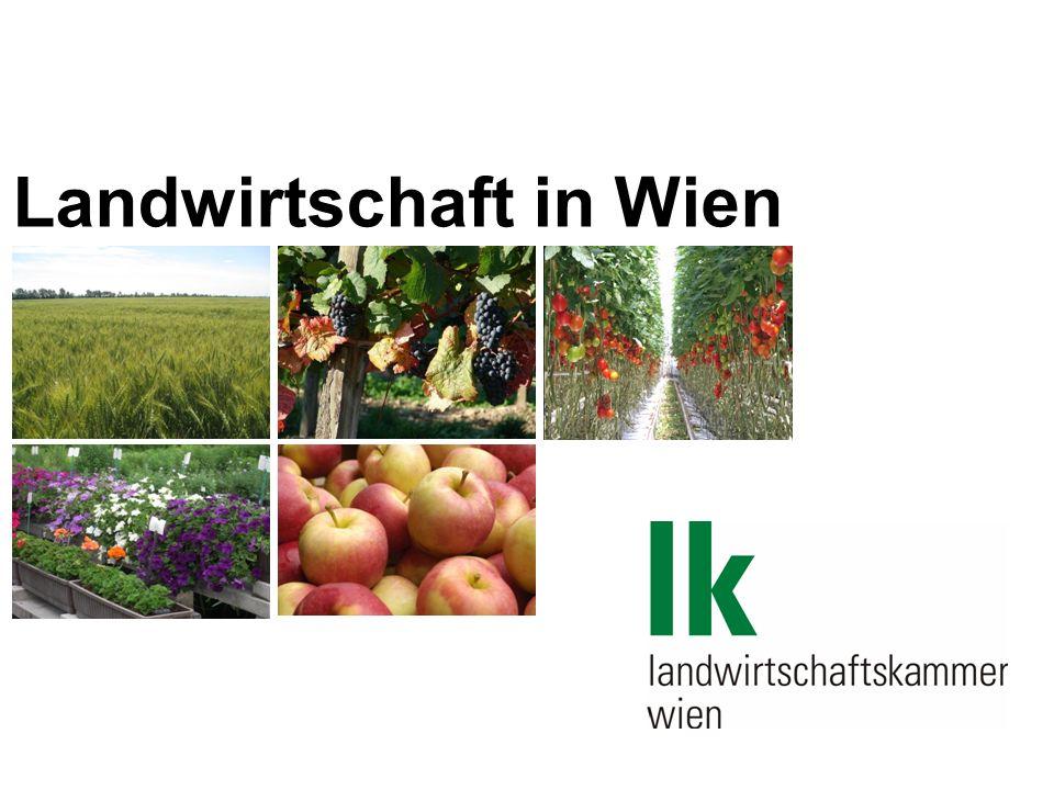 2009/Folie 2 Landwirtschaft in Wien Wien hat eine Fläche von: 41.500 ha Landwirtschaftlich genutzt: 6.352 Landwirtschaftliche Betriebe in Wien: 729 Jährlicher Rückgang von Betrieben im Österreichschnitt (2,7%)