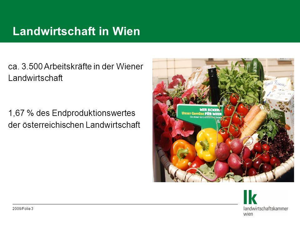 2009/Folie 3 Landwirtschaft in Wien ca. 3.500 Arbeitskräfte in der Wiener Landwirtschaft 1,67 % des Endproduktionswertes der österreichischen Landwirt