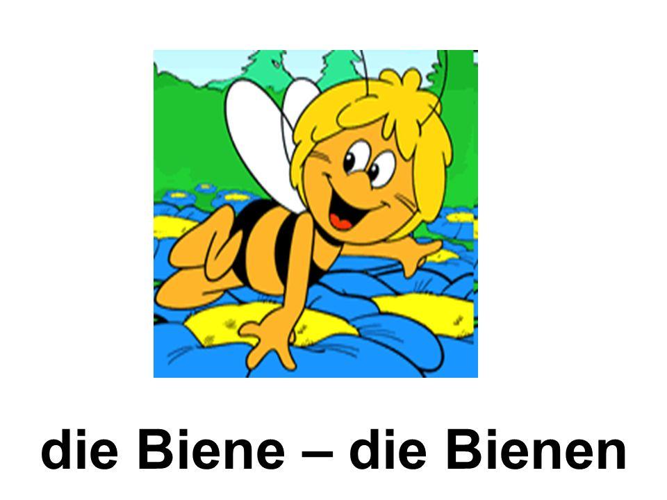 die Biene – die Bienen