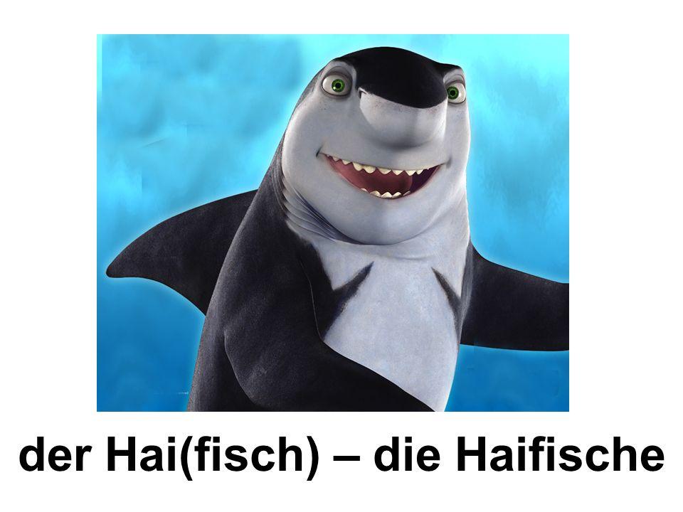der Hai(fisch) – die Haifische