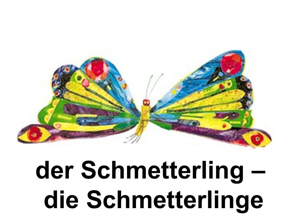 der Schmetterling – die Schmetterlinge