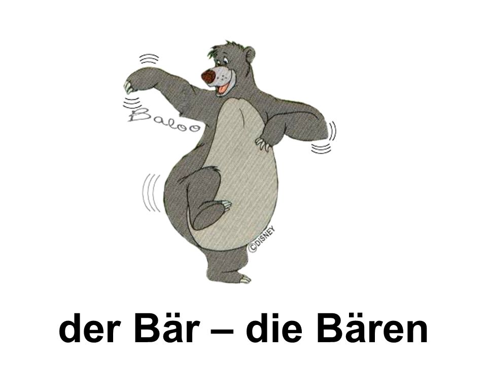 der Bär – die Bären