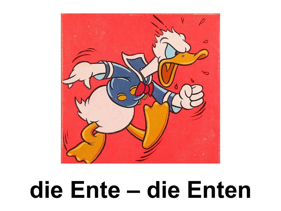 die Ente – die Enten
