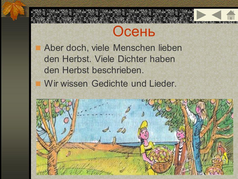 Oсень Aber doch, viele Menschen lieben den Herbst. Viele Dichter haben den Herbst beschrieben. Wir wissen Gedichte und Lieder.