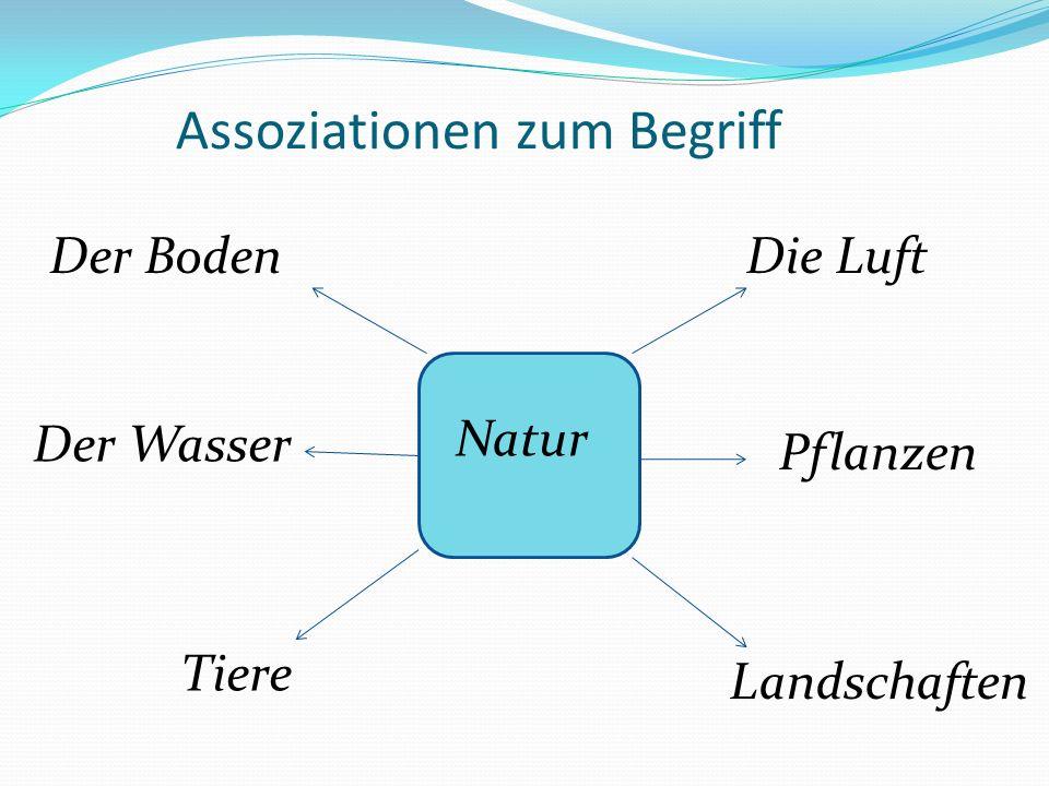 Assoziationen zum Begriff Natur Der BodenDie Luft Der Wasser Pflanzen Tiere Landschaften