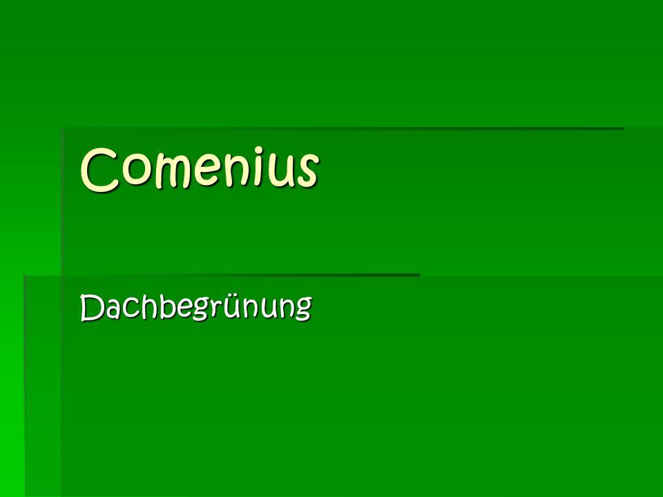 Was macht man in Comenius.