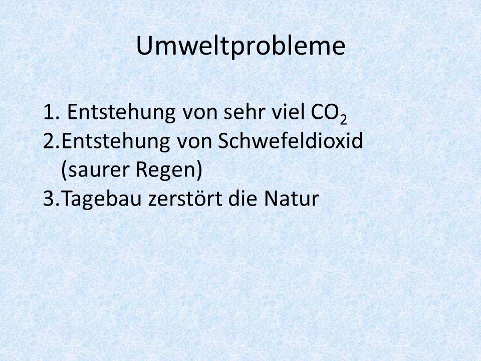 Umweltprobleme 1.