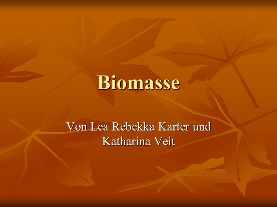 Biomasse Von Lea Rebekka Karter und Katharina Veit