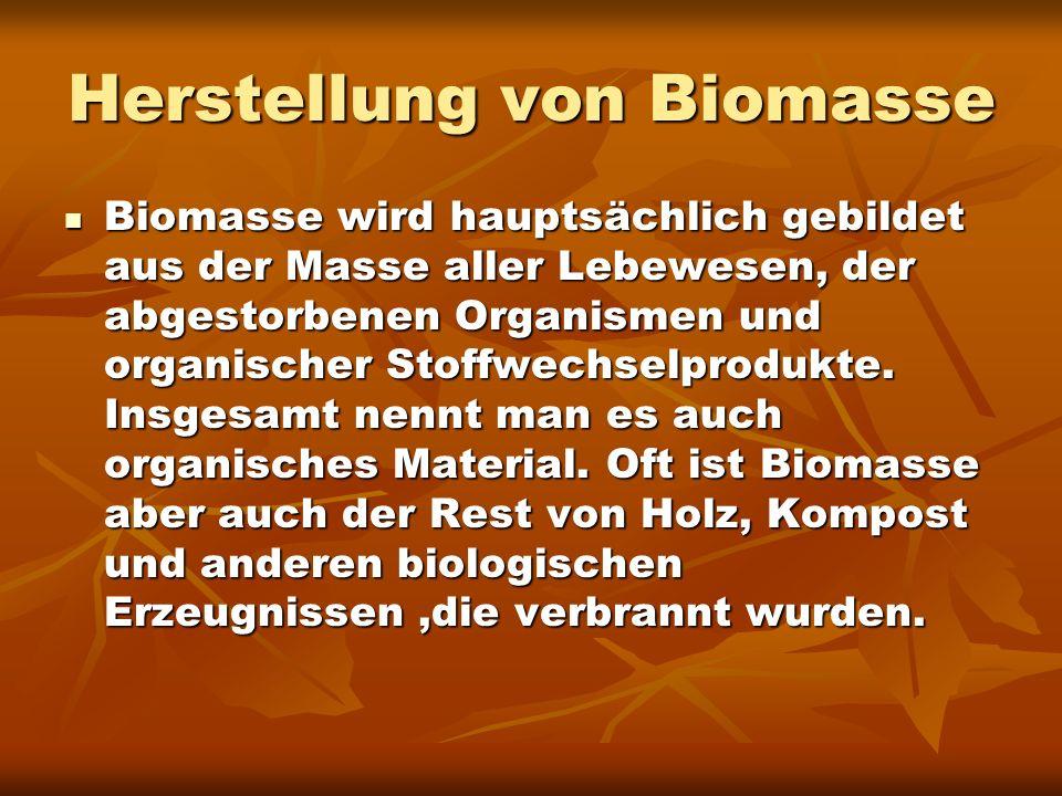 Herstellung von Biomasse Biomasse wird hauptsächlich gebildet aus der Masse aller Lebewesen, der abgestorbenen Organismen und organischer Stoffwechsel