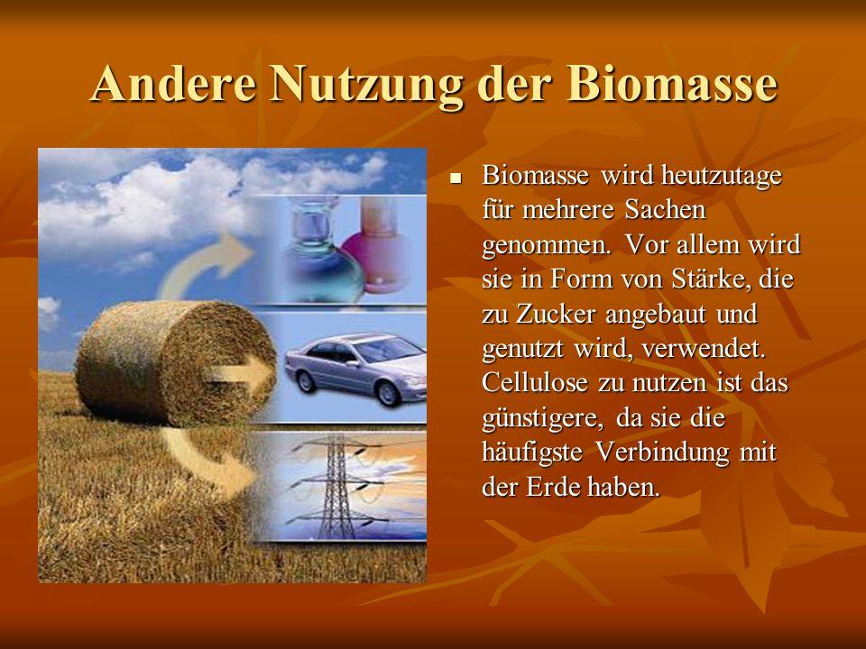 Andere Nutzung der Biomasse Biomasse wird heutzutage für mehrere Sachen genommen. Vor allem wird sie in Form von Stärke, die zu Zucker angebaut und ge