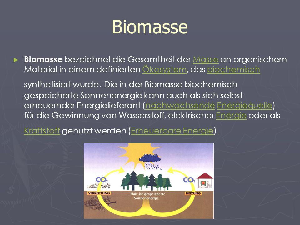 Biomasse Biomasse bezeichnet die Gesamtheit der Masse an organischem Material in einem definierten Ökosystem, das biochemisch synthetisiert wurde. Die