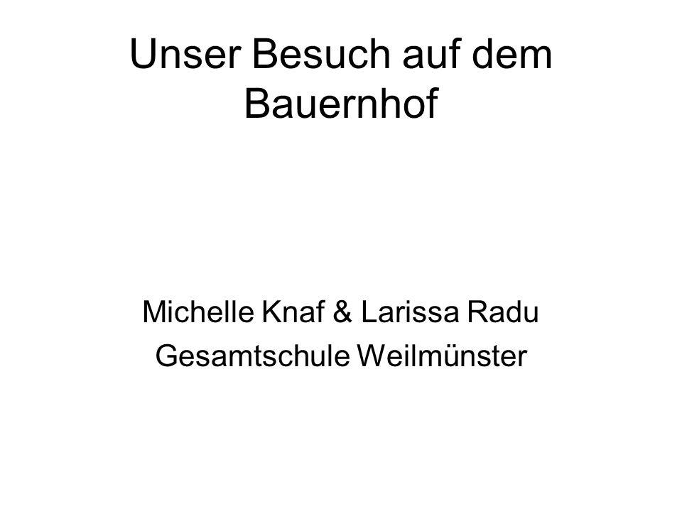 Unser Besuch auf dem Bauernhof Michelle Knaf & Larissa Radu Gesamtschule Weilmünster