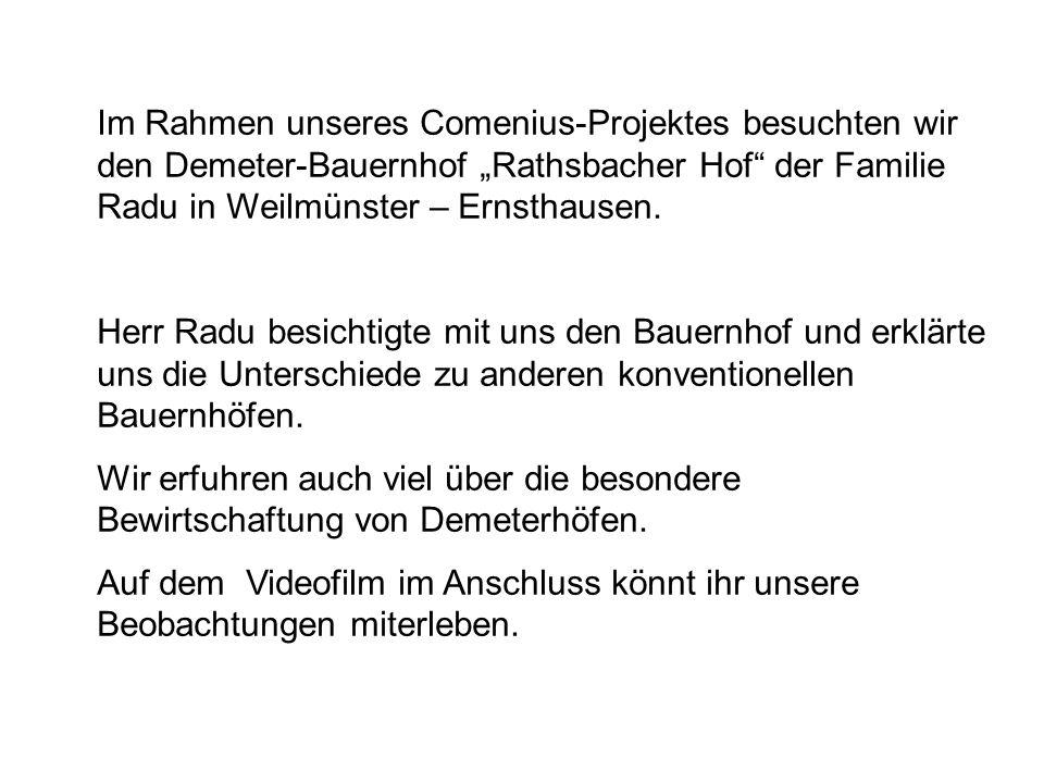 Im Rahmen unseres Comenius-Projektes besuchten wir den Demeter-Bauernhof Rathsbacher Hof der Familie Radu in Weilmünster – Ernsthausen. Herr Radu besi
