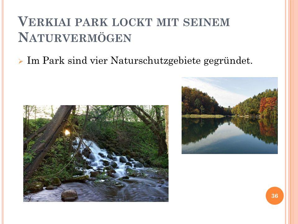 V ERKIAI PARK LOCKT MIT SEINEM N ATURVERMÖGEN Im Park sind vier Naturschutzgebiete gegründet. 36