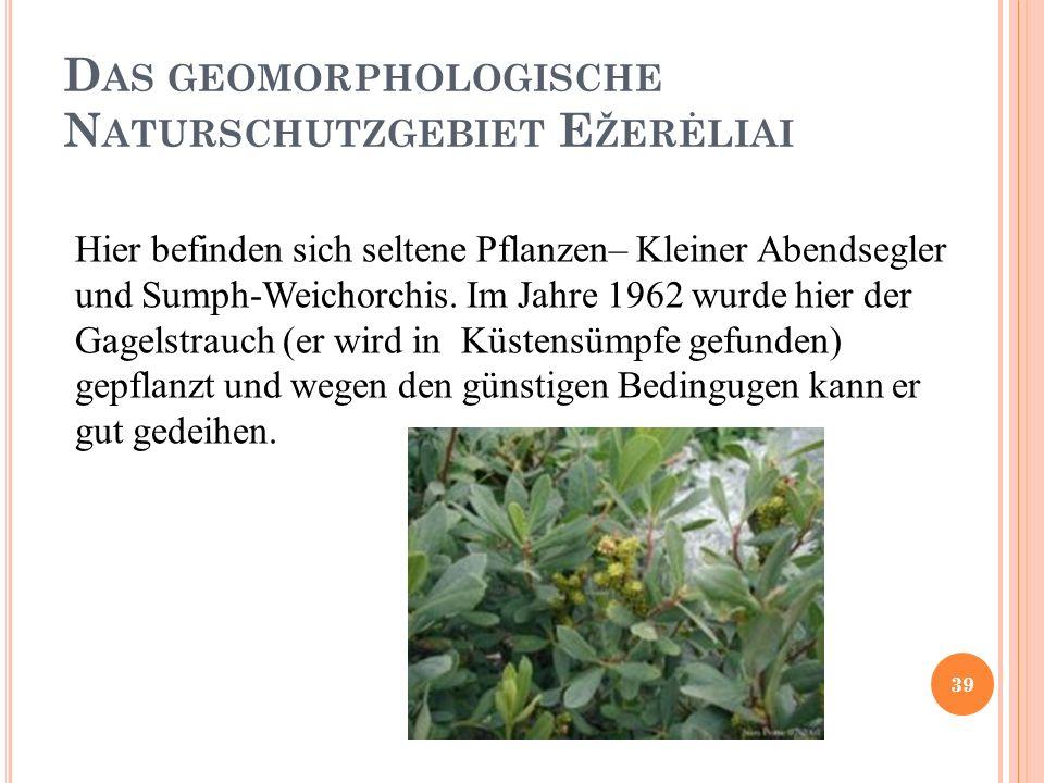 D AS GEOMORPHOLOGISCHE N ATURSCHUTZGEBIET E ŽERĖLIAI Hier befinden sich seltene Pflanzen– Kleiner Abendsegler und Sumph-Weichorchis.