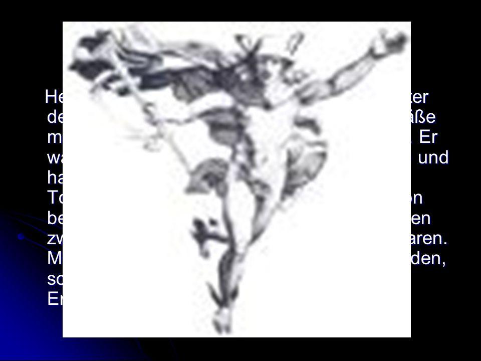 Hermes Hermes war Sohn des Zeus und einer Tochter des Titanen Atlas.