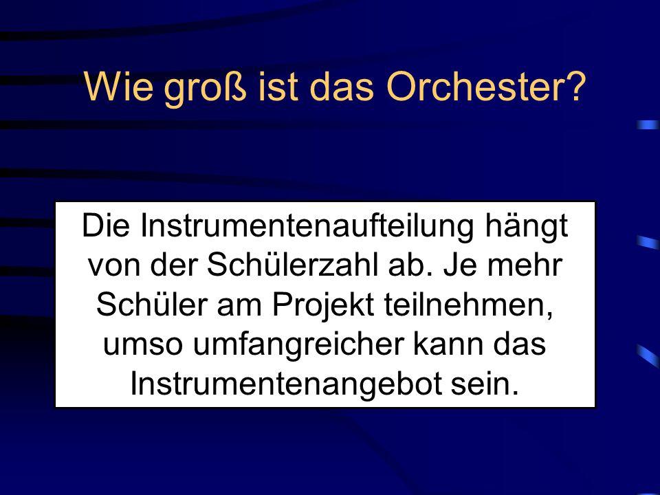 Wie funktioniert die Instrumentenauswahl Schüler/in Musiklehrer Drei Wünsche.