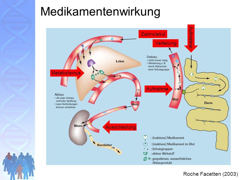 Aufnahme Verteilung Stoffwechsel Zielmolekül Ausscheidung Medikamentenwirkung Roche Facetten (2003) Aufnahme Ausscheidung Metabolismus Verteilung Zielmolekül