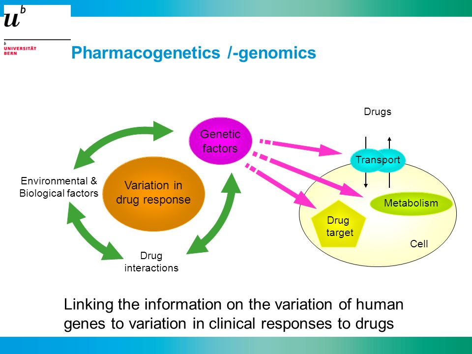 Pharmacogenetics /-genomics Linking the information on the variation of human genes to variation in clinical responses to drugs Variation in drug resp