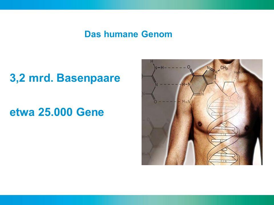 Perioperative Medizin und Genetik Nature.2004 May 27;429(6990):464-8.