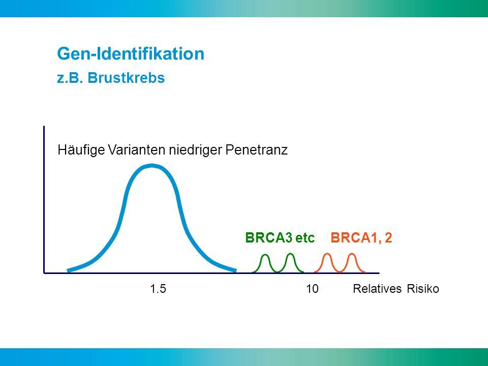 Häufige Varianten niedriger Penetranz BRCA3 etc BRCA1, 2 1.5 10 Relatives Risiko Gen-Identifikation z.B. Brustkrebs