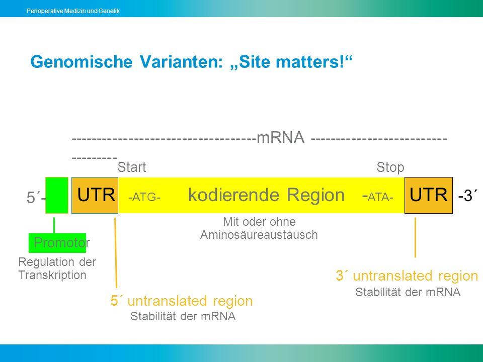 Perioperative Medizin und Genetik Genomische Varianten: Site matters! 5´- -3´ UTR -ATG- kodierende Region - ATA- UTR Promotor 5´ untranslated region 3
