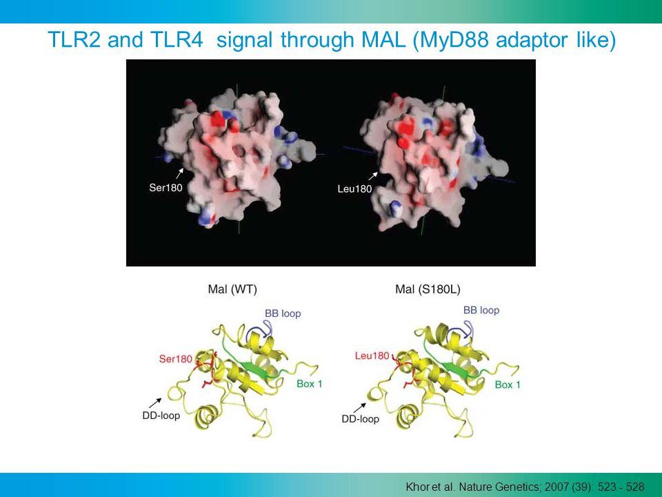 Khor et al. Nature Genetics; 2007 (39): 523 - 528 TLR2 and TLR4 signal through MAL (MyD88 adaptor like)