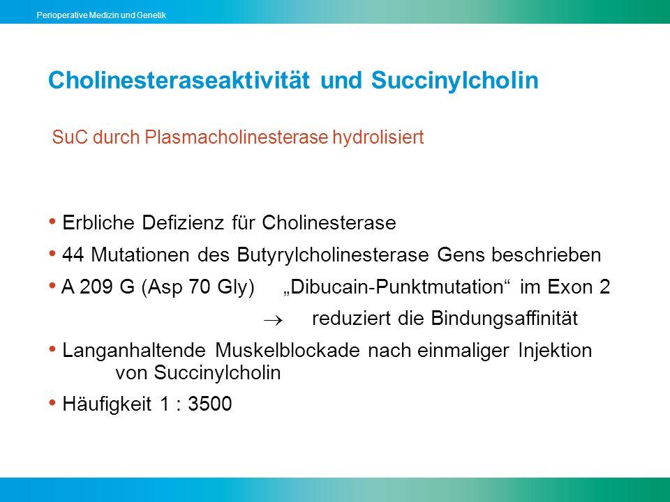 Perioperative Medizin und Genetik Cholinesteraseaktivität und Succinylcholin SuC durch Plasmacholinesterase hydrolisiert Erbliche Defizienz für Cholin